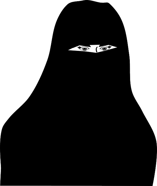 Civil rights federal lawsuits. Muslim terrorist png vector freeuse