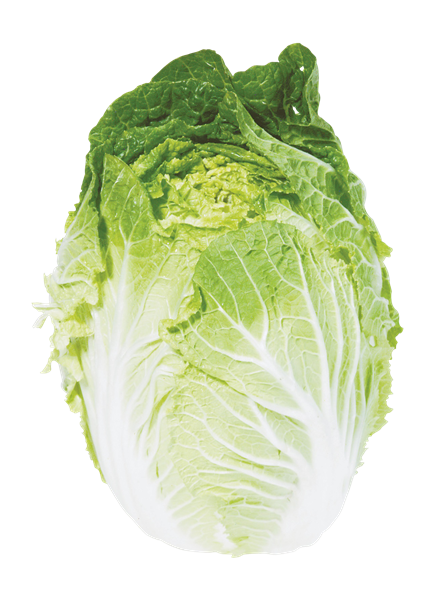Napa cabbage png. Hy vee aisles online