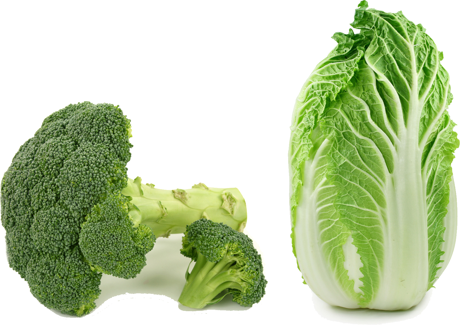 Napa cabbage png. Asian cuisine choy sum
