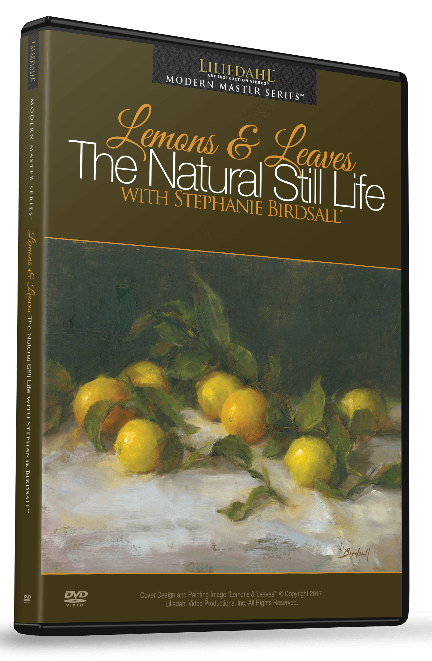 Natural drawing modern. Stephanie birdsall lemons leaves
