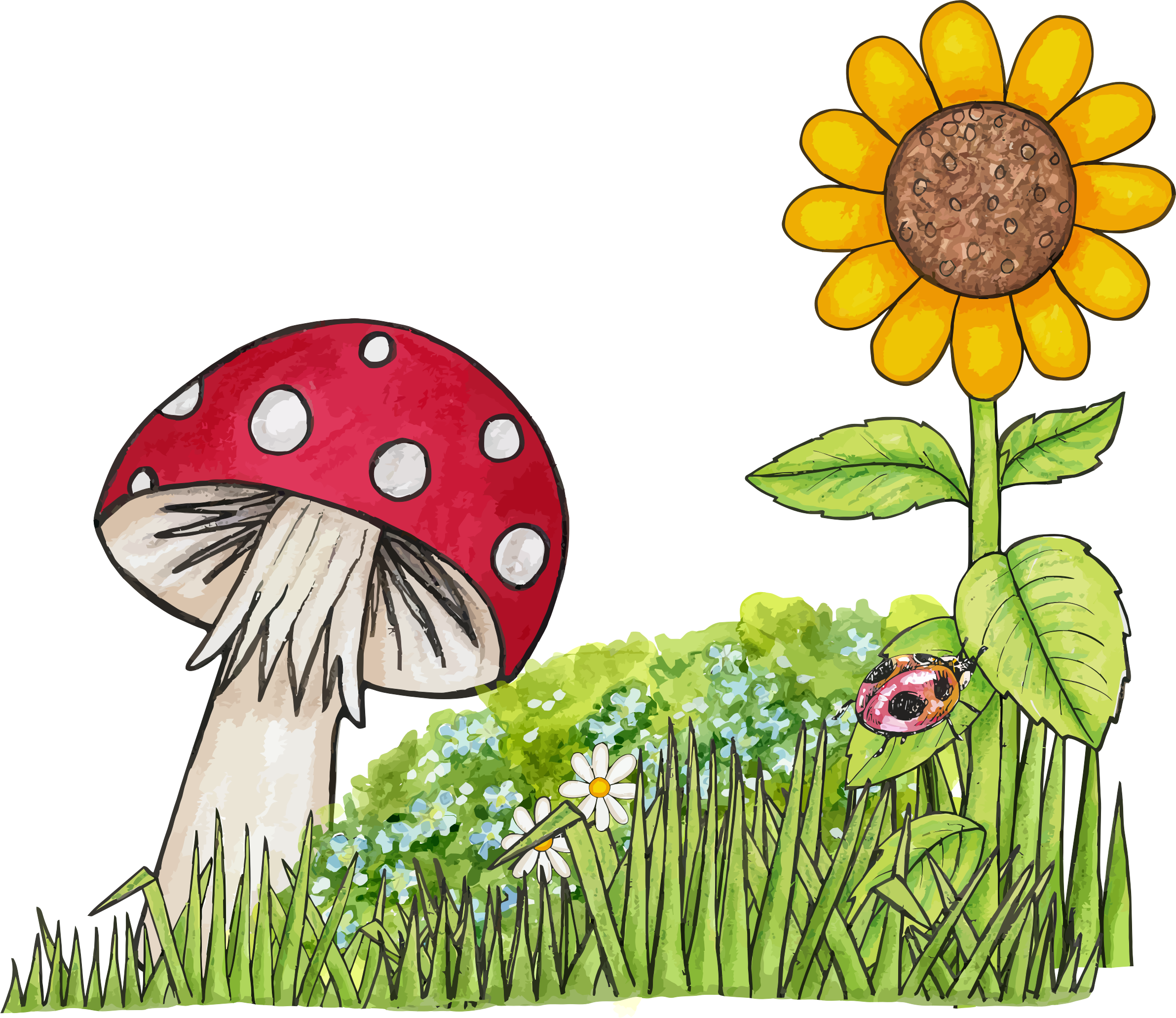 Natural drawing scene. Clipart toadstool big image