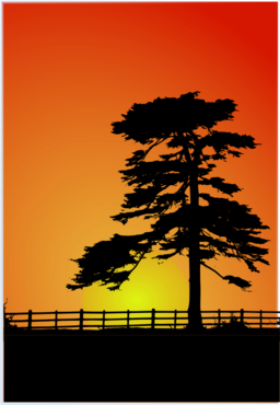 Drawing sunset evening. Free cliparts download clip