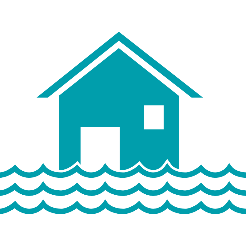 Natural Resources Wales. Flood risk options to