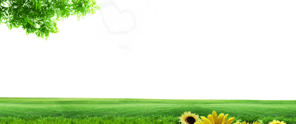 Nature background png. Lawn energy grassland wallpaper