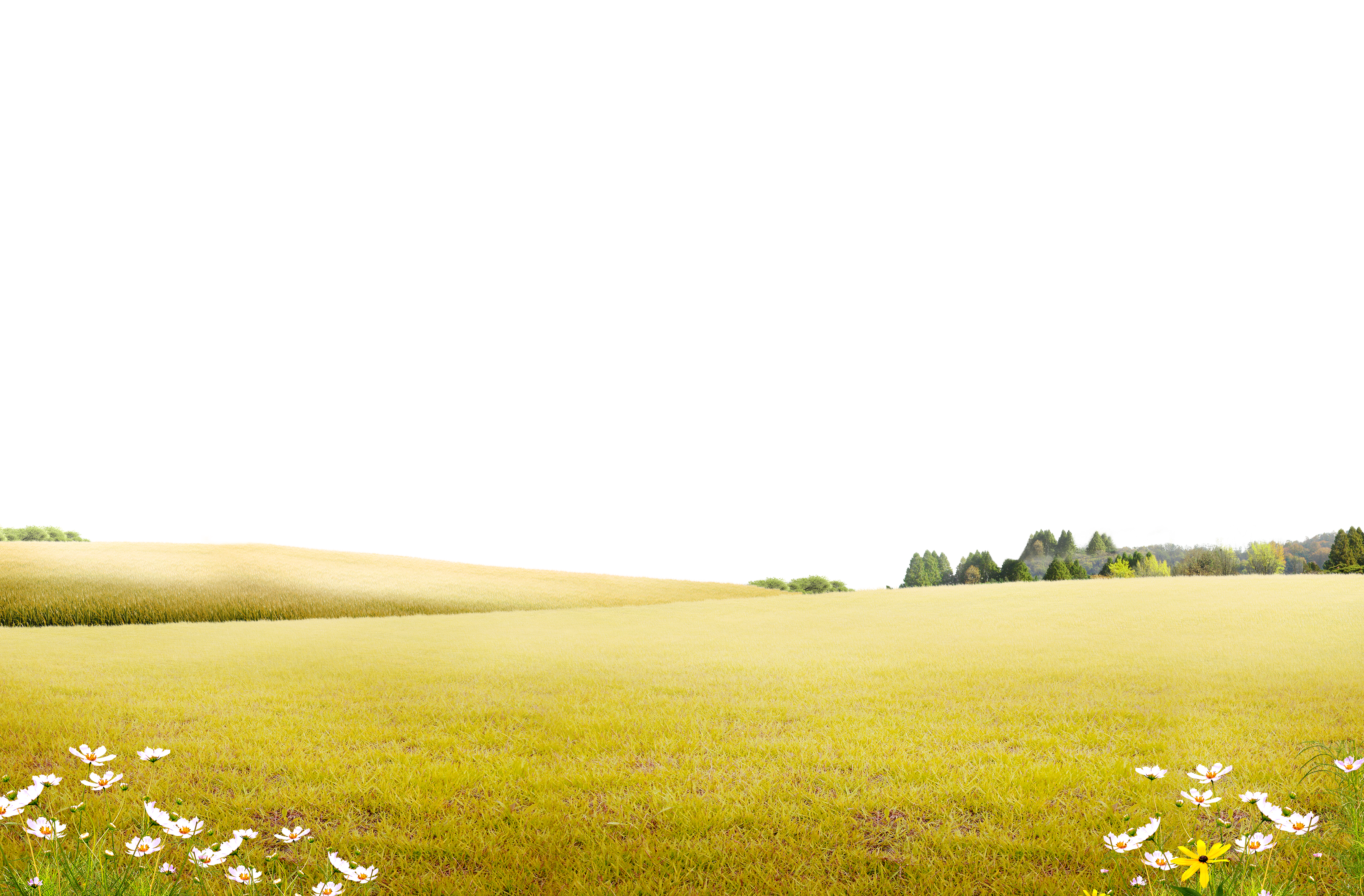 Land vector nature background