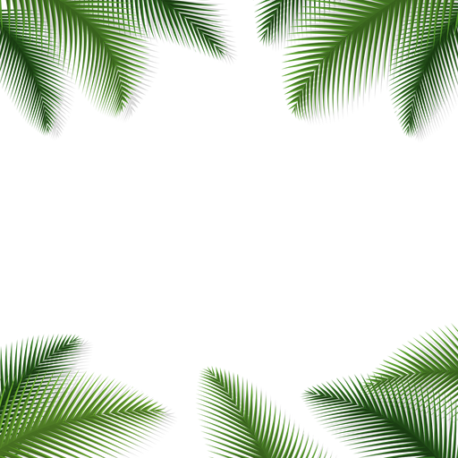 Nature background png. Palm leaves floral transparent
