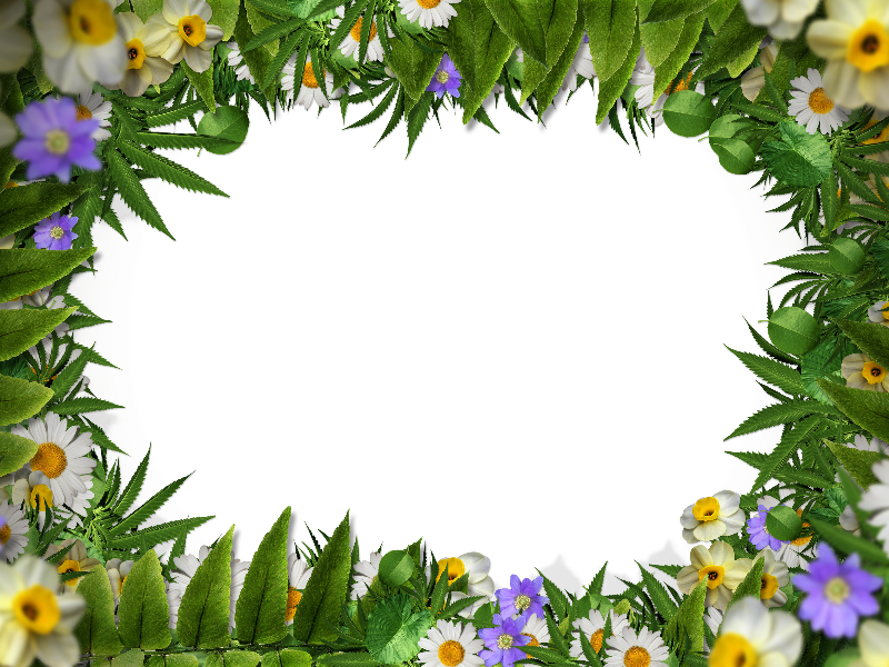 Nature frame png. Flower border with green