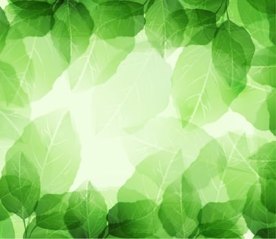 Nature clipart frame. Free and vector graphics