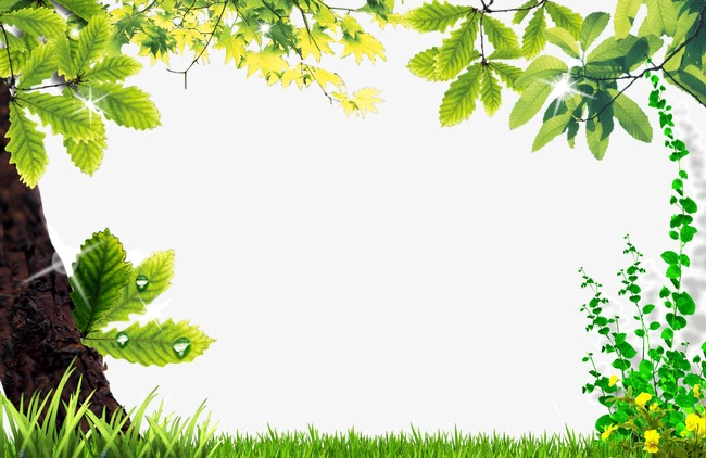 Nature clipart frame. Beautiful natural border png