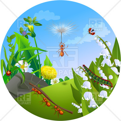 Nature clipart greenery. Insect life in the clipart royalty free stock