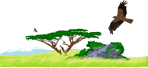 Nature clipart png. Natural environment images transparent