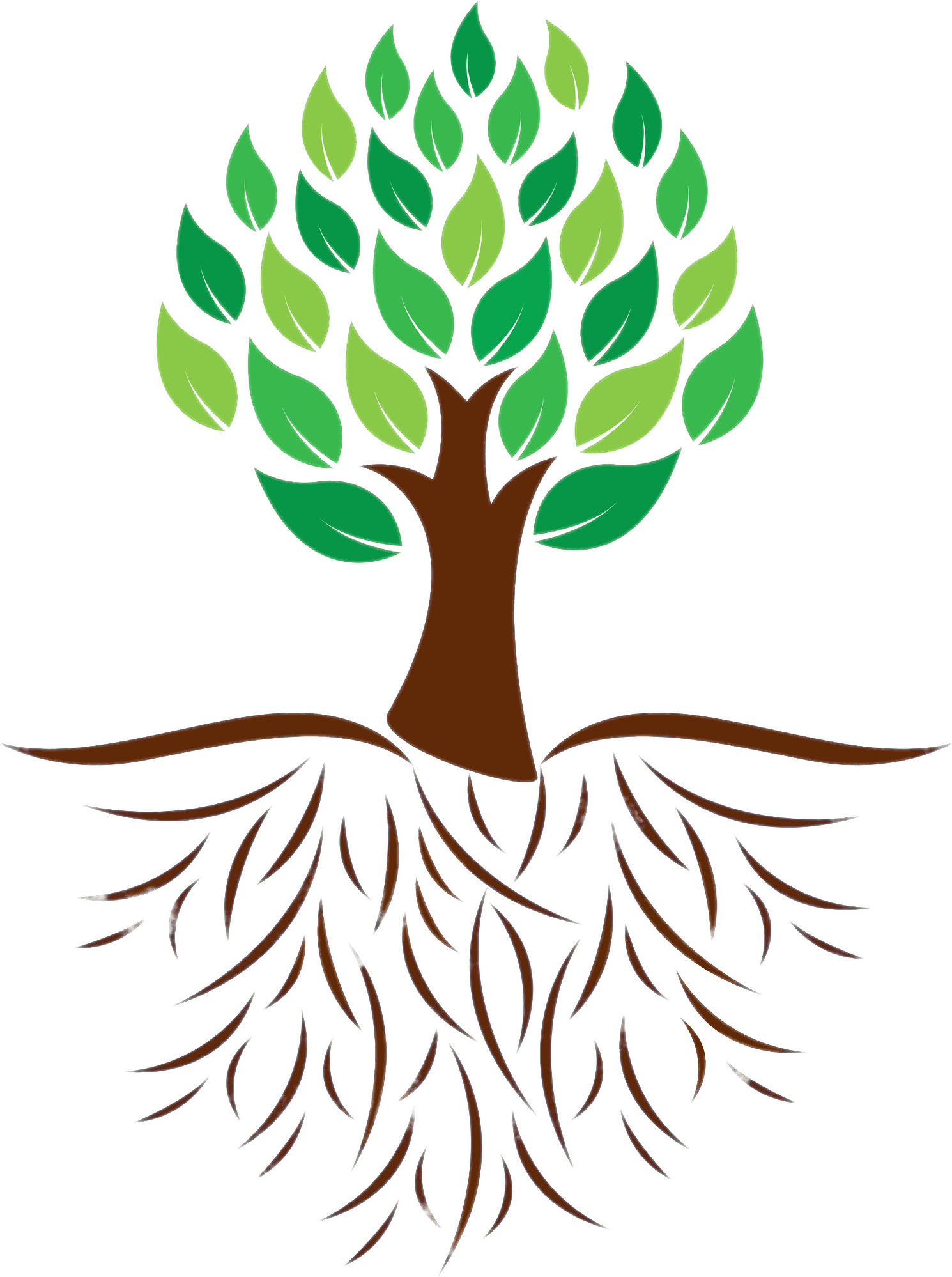 Nature clipart tree. Download with roots png