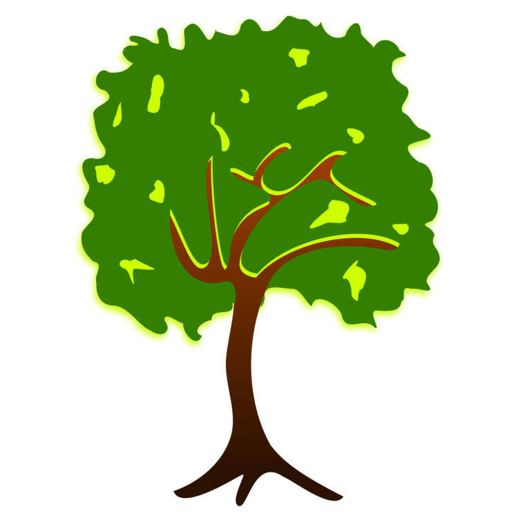 Nature clipart tree. Branch drawing plant story