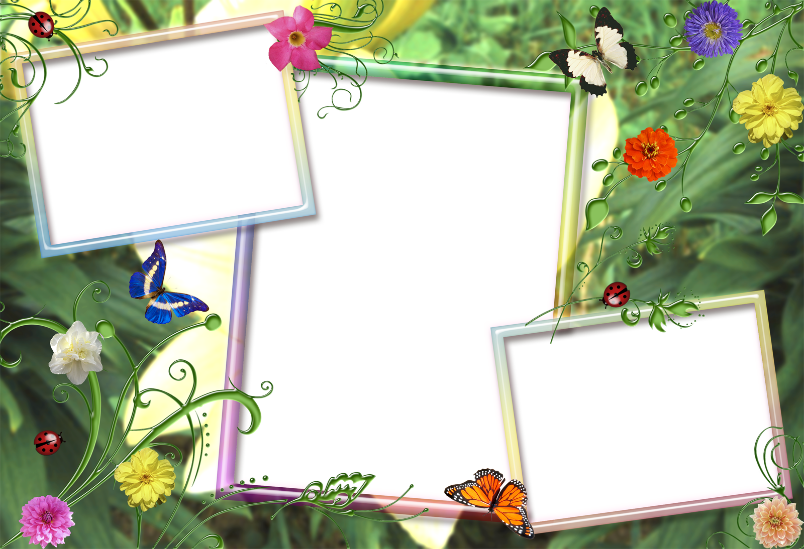 Nature frame png. Frames and borders image