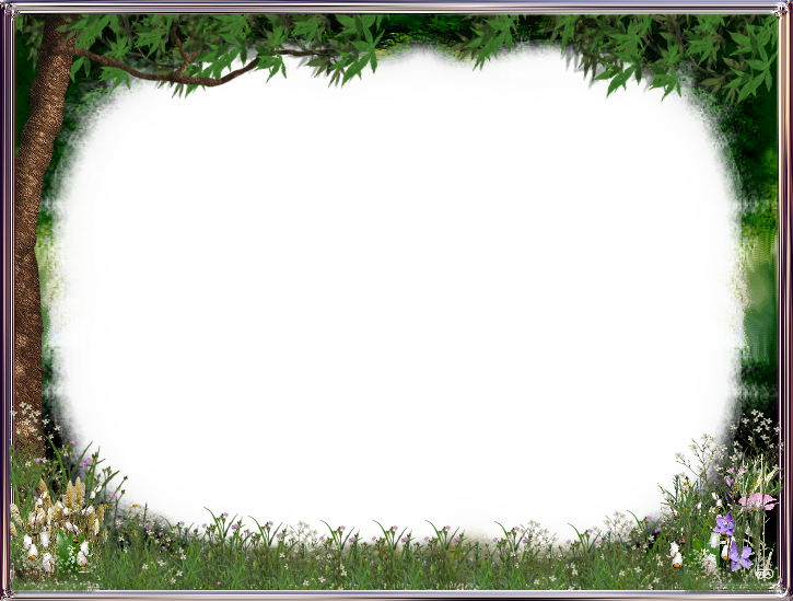 Nature frame png. Themed photo