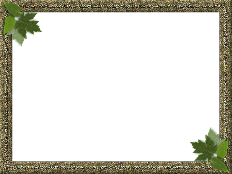 Nature frame png. Picture frames ideas photo