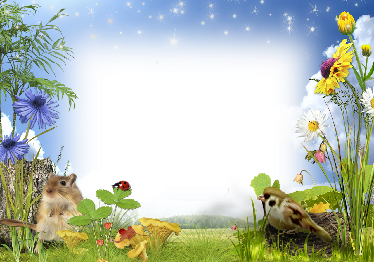 Nature frame png. Photo with flowers frames