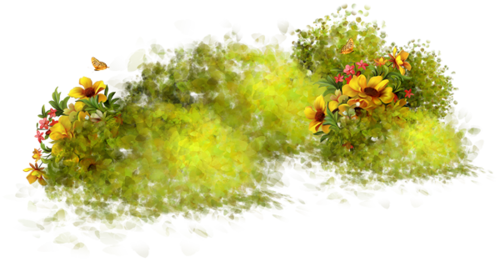Nature images in png format. Transparent all image