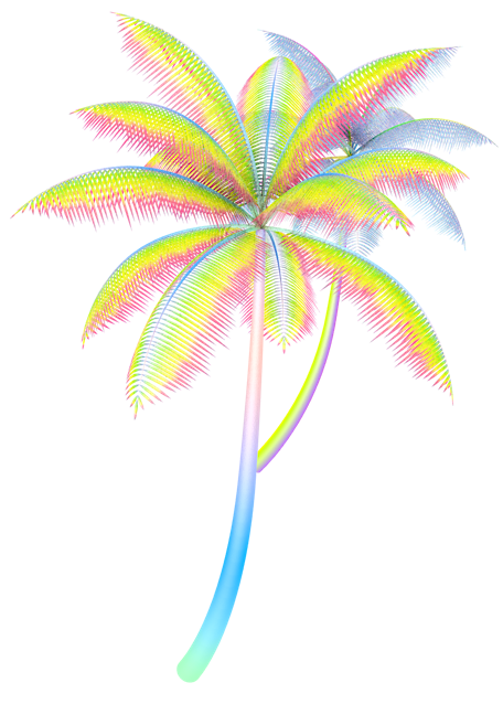 Neon palm tree png. Image about edits in
