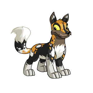 Transparent neopets lupe. Spotted colors the daily