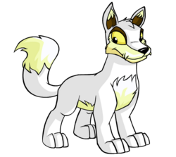Transparent neopets lupe. Neodex the wiki
