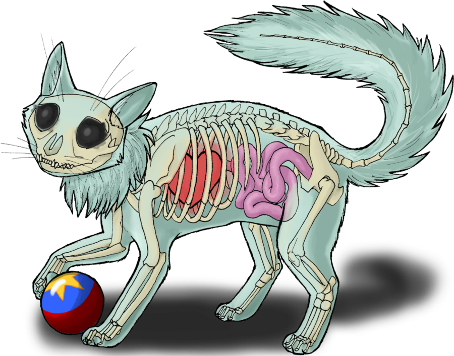 Neopets transparent realistic. Wocky by roqi on