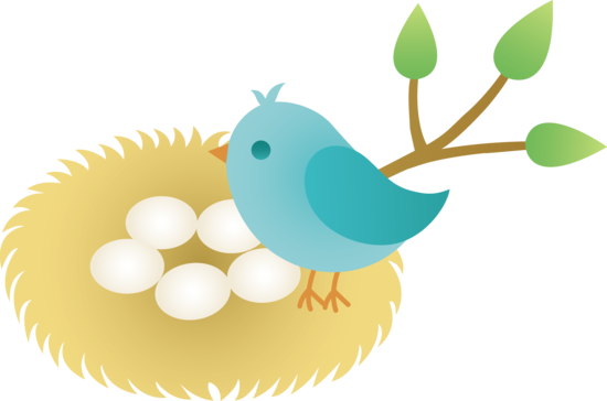 Drawing egg animated. Cute bird nest png