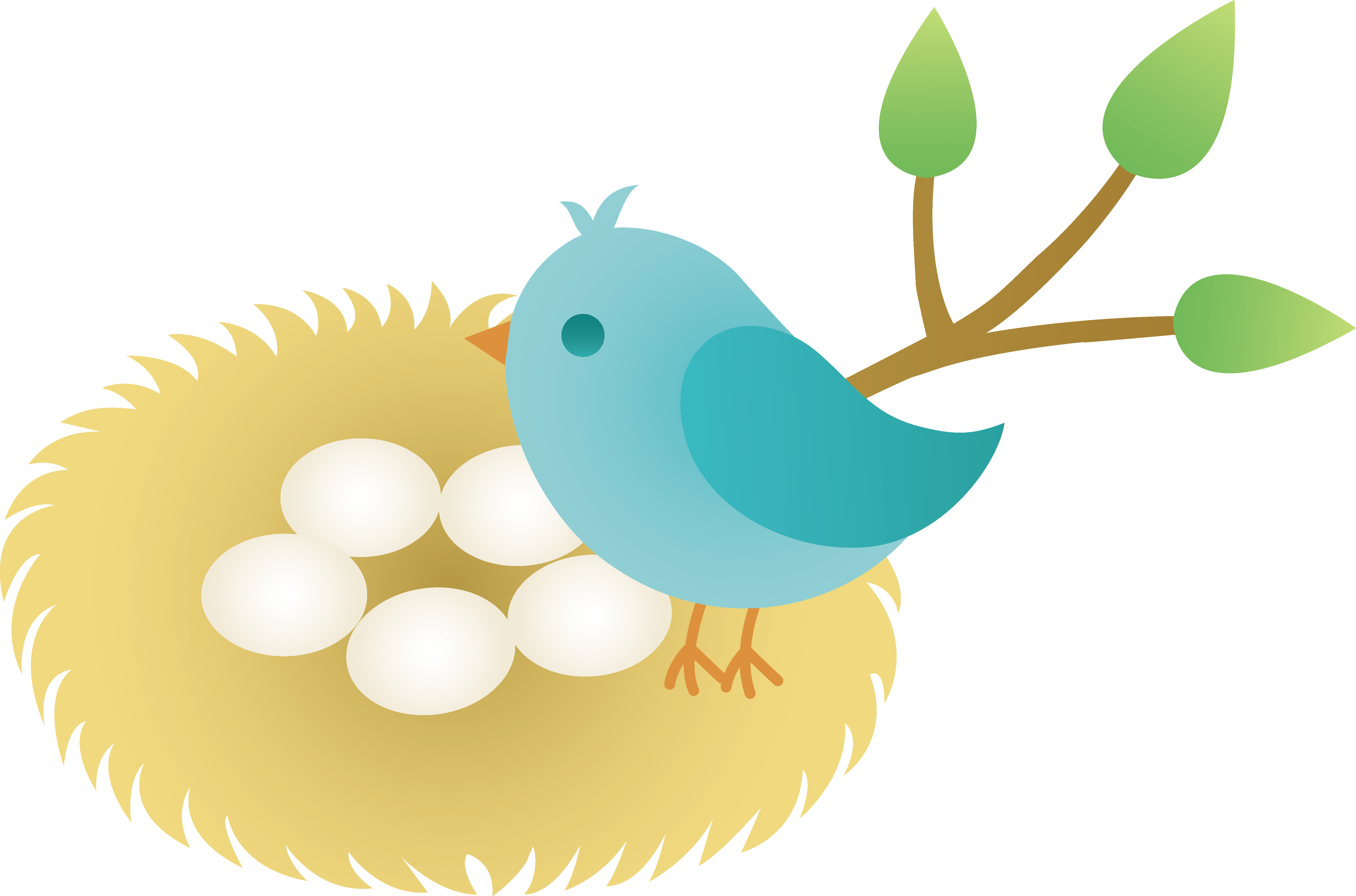 Nest clipart bird's nest. Cartoon bird clip art