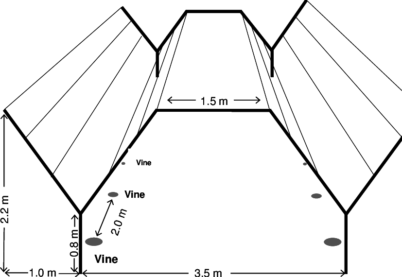 Netting vector net design. Dimensions of the y