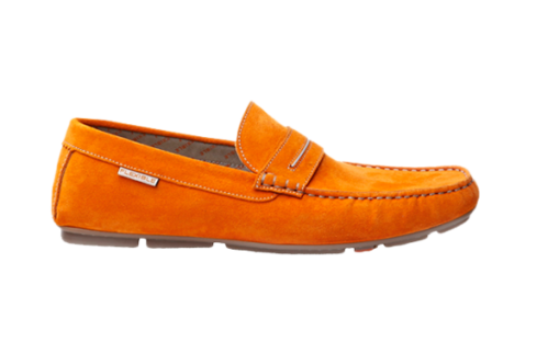 New shoe png. Loafers shoes men women