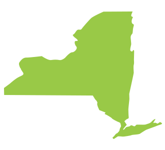 Safer states partners. New york png state vector freeuse download