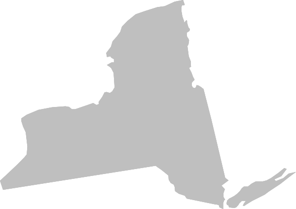 States vector silhouette. New york state clip