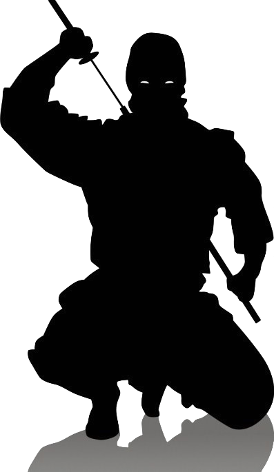 Ninja silhouette png. Image crouch puffleville wiki