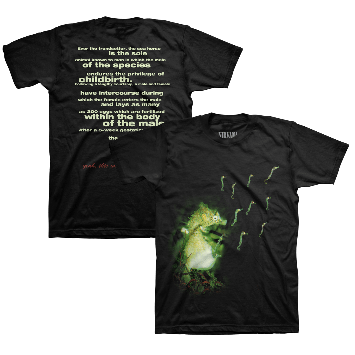 Nirvana transparent seahorse. Tee official store