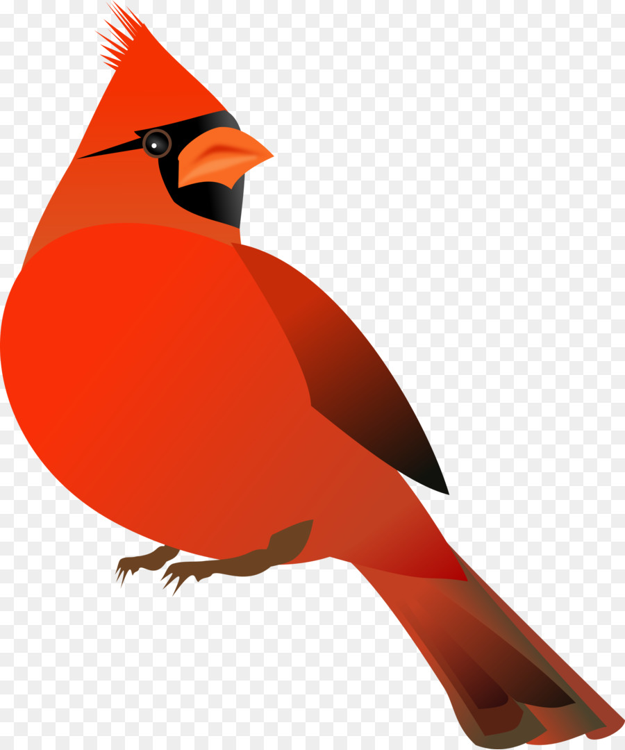 Northern cardinal. Bird clipart drawing red