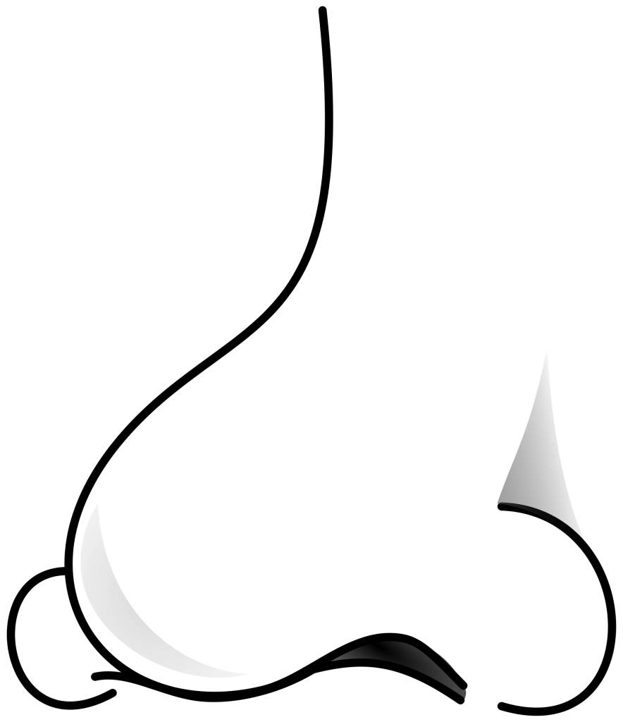 Free nose cliparts download. The nosed clipart png black and white download