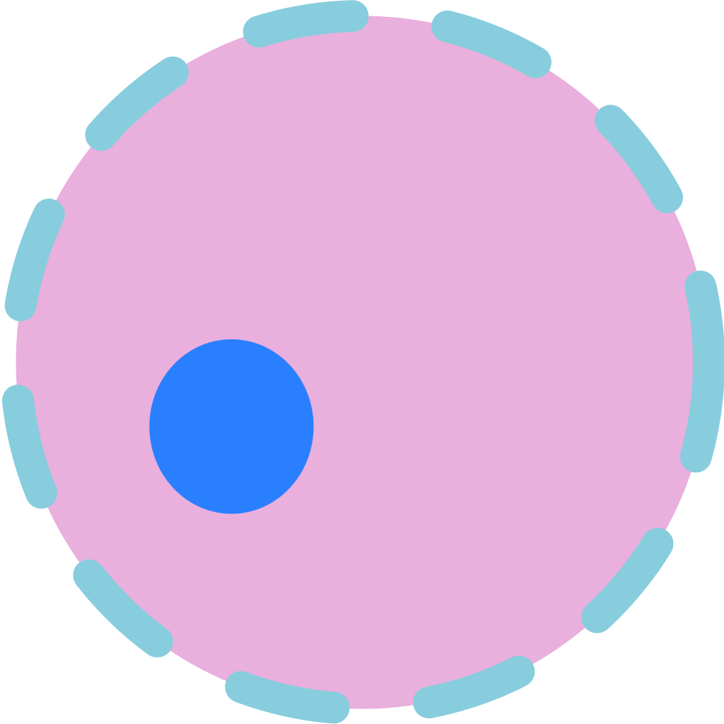 Nucleus transparent cell. File svg wikimedia commons