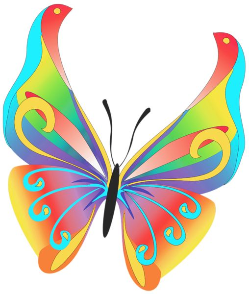 Photo clipart butterfly. Best butterflies clip