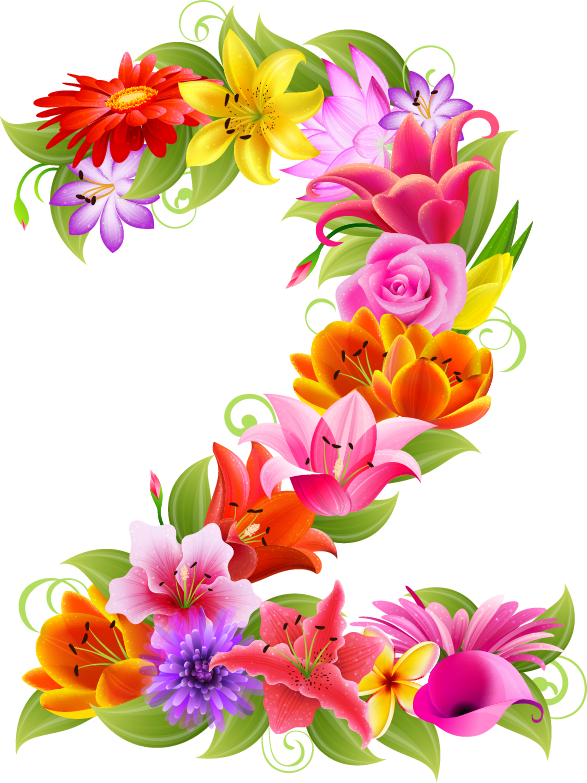 Numbers clipart floral. Png pinterest