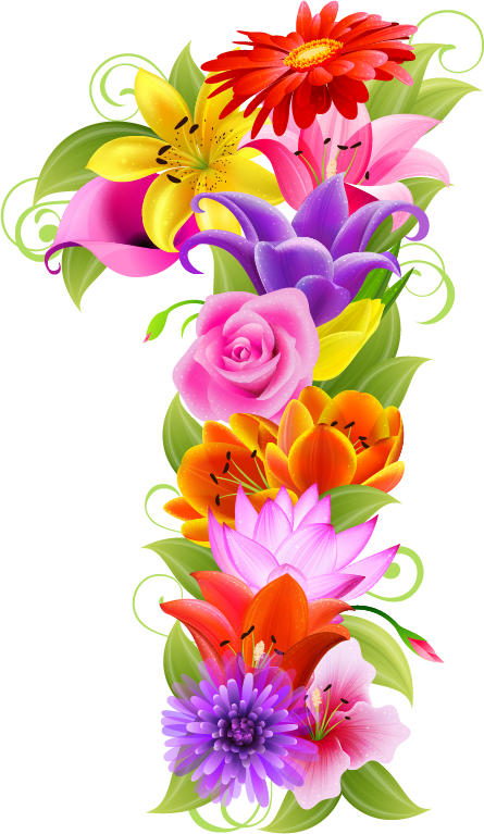 Numbers clipart floral. Pin by tania sarabia