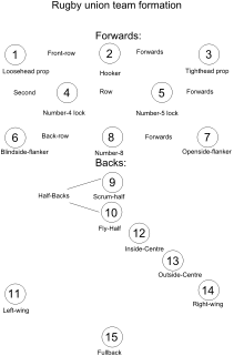 Numbers drawing number 14. Rugby union positions wikipedia
