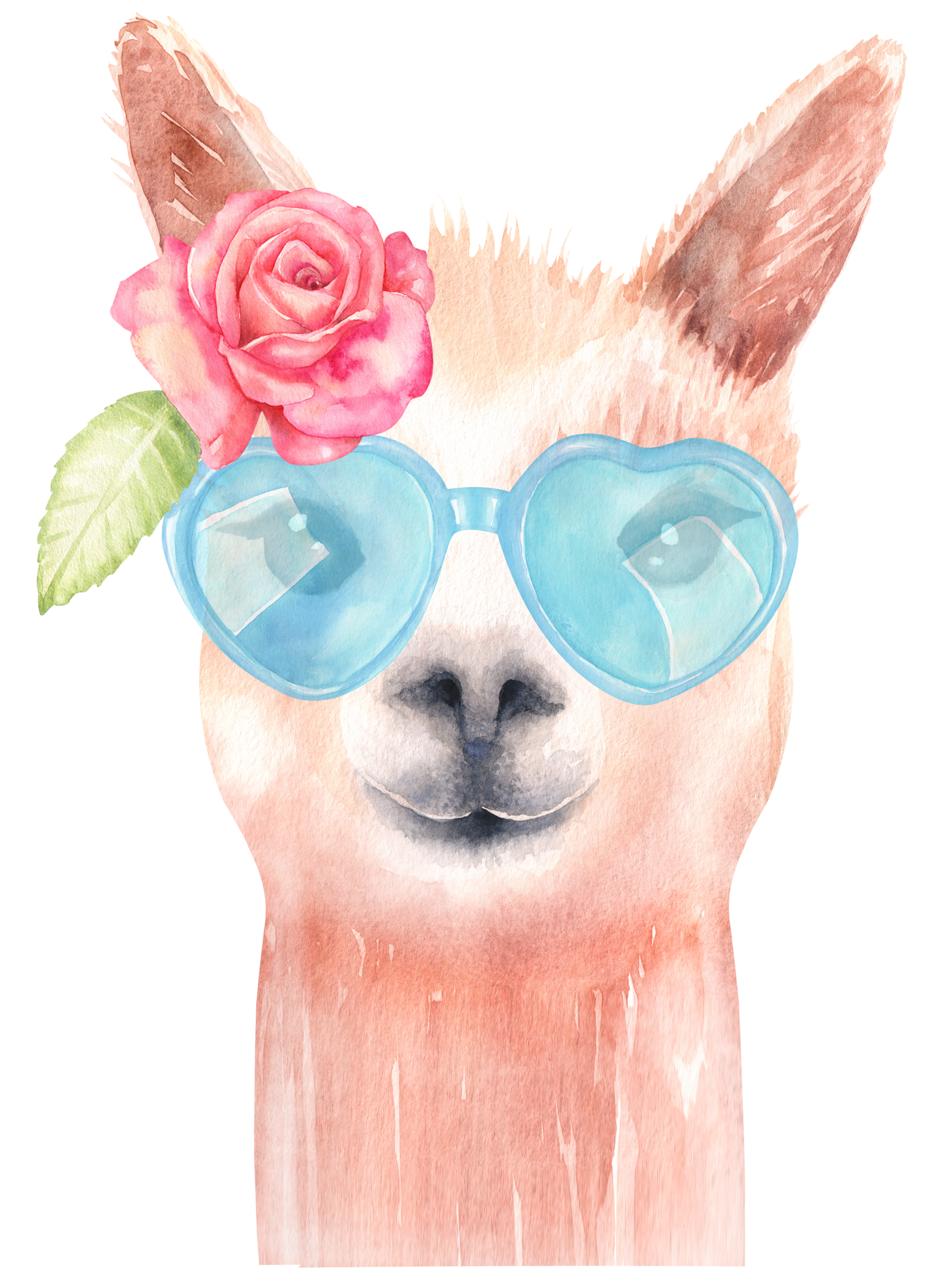 Nursery drawing watercolor. Llama clipart graphics alpaca