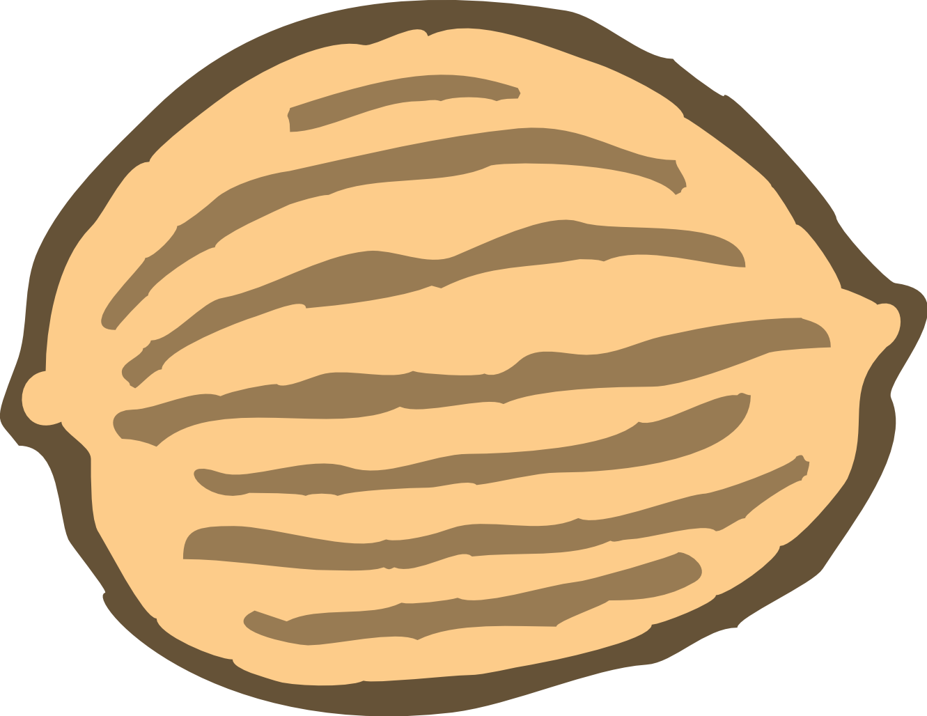 Nuts transparent outline. Got nut clipart