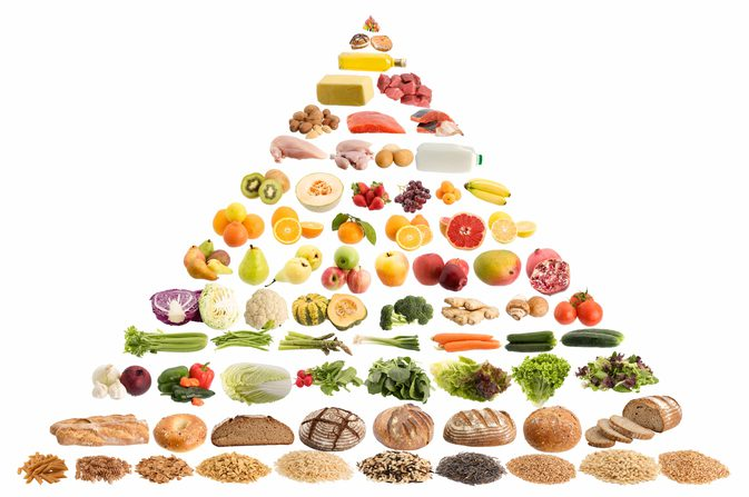 Nutrition clipart healthy body. How does eating affect