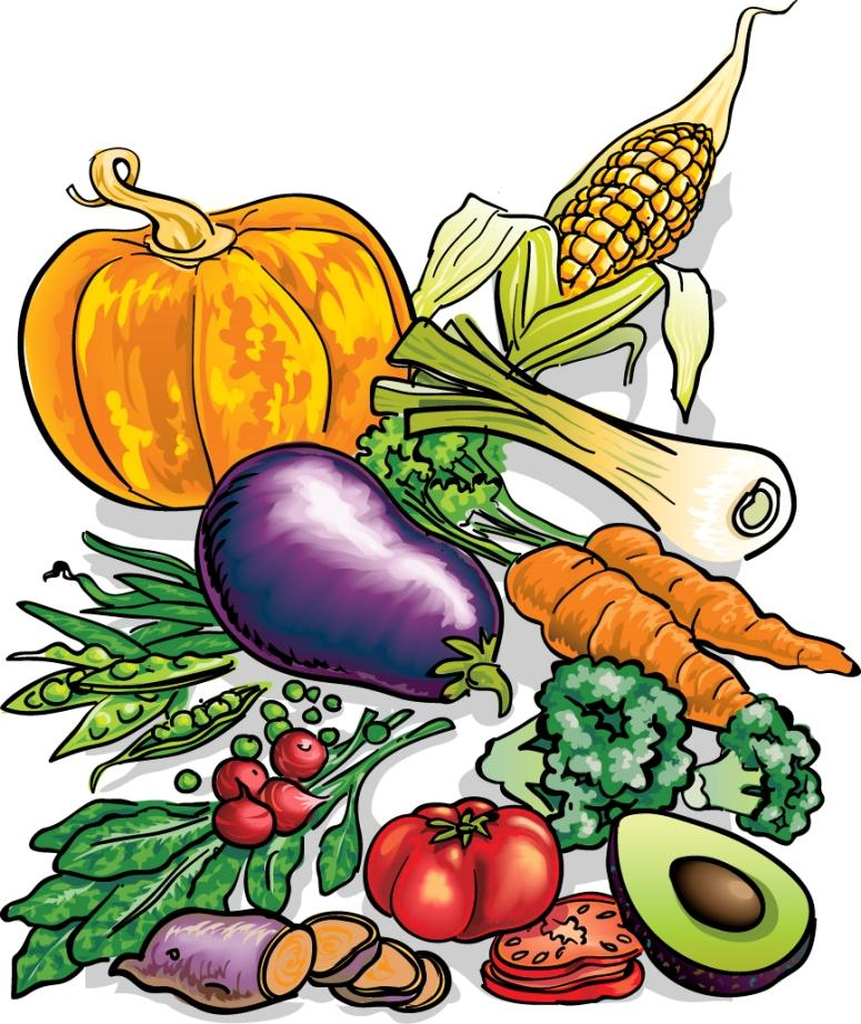 nutrition clipart lot food