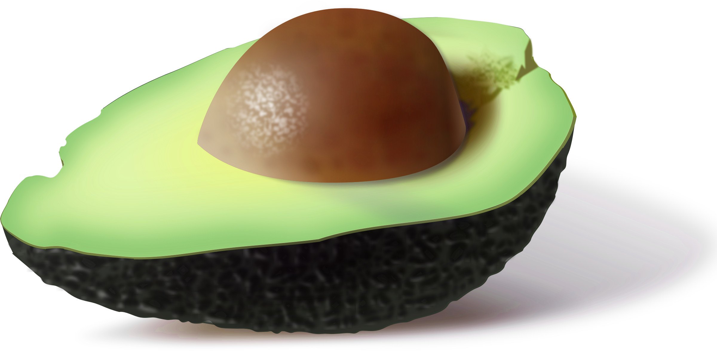 Nuts clipart avocado. Png images free download