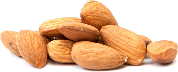 Almond vector nut. Png transparent images all