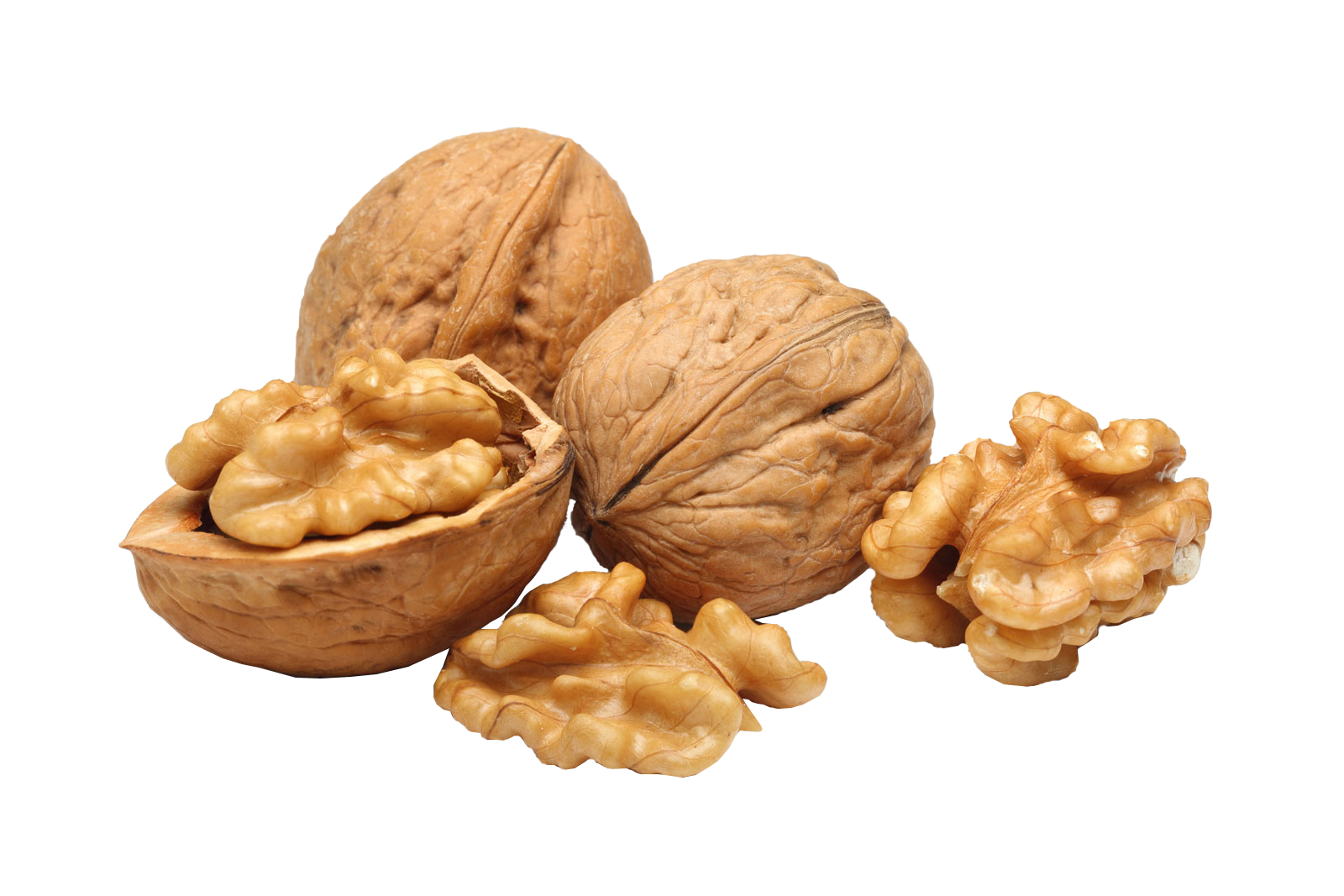 Nuts transparent dry