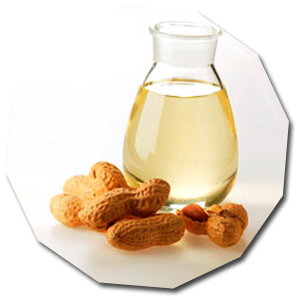 Nuts drawing oil seed. Feeding management fat vegetableanimal