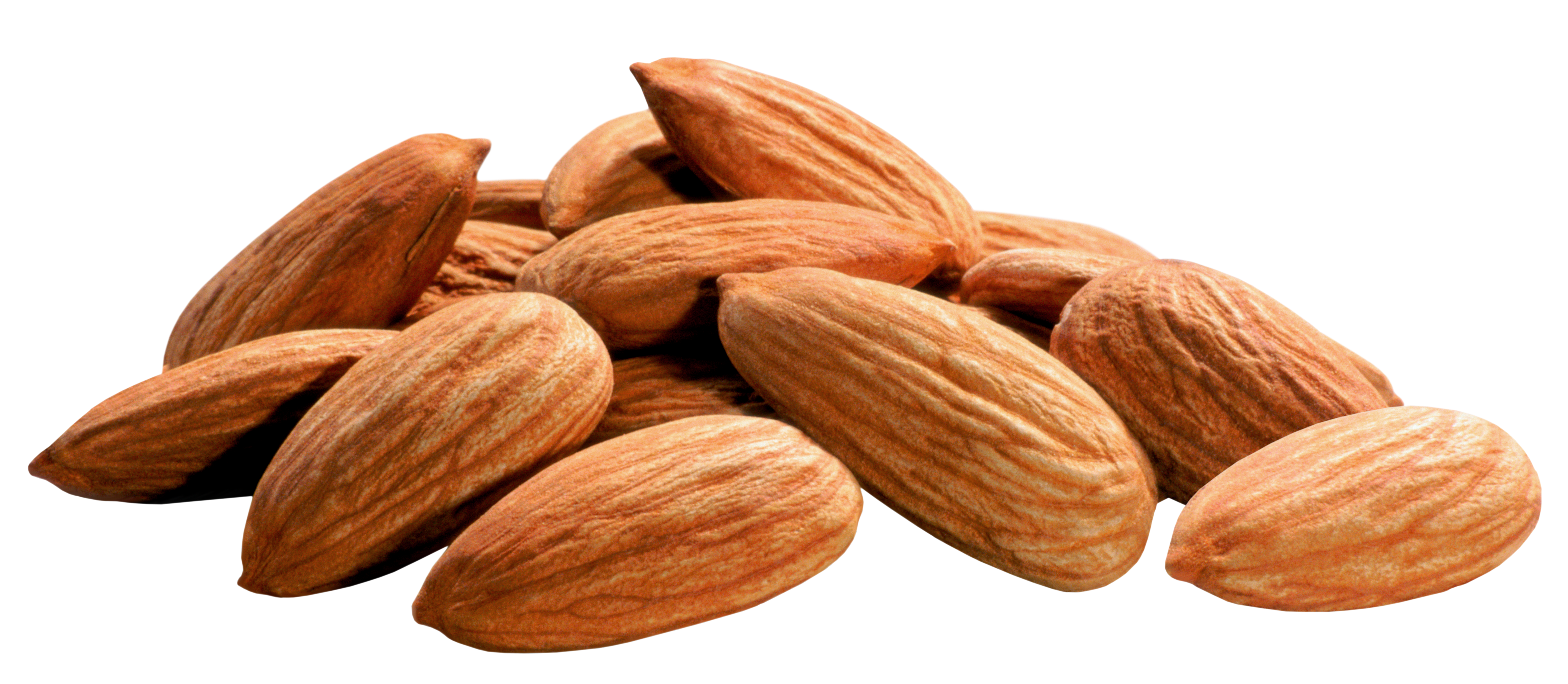Nuts transparent. Almonds png image gallery